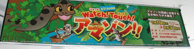 「Watch! Touch! アマゾン!!」