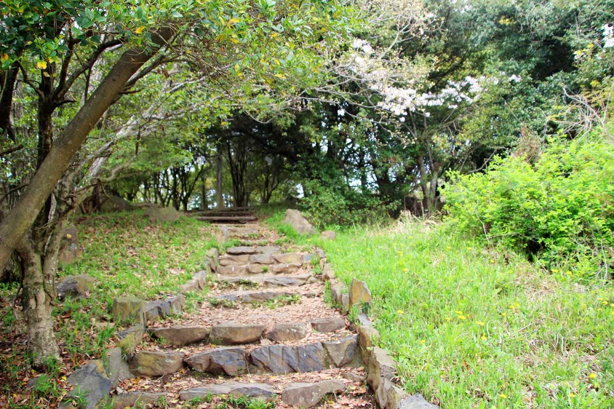 青ノ山の頂上に上る階段