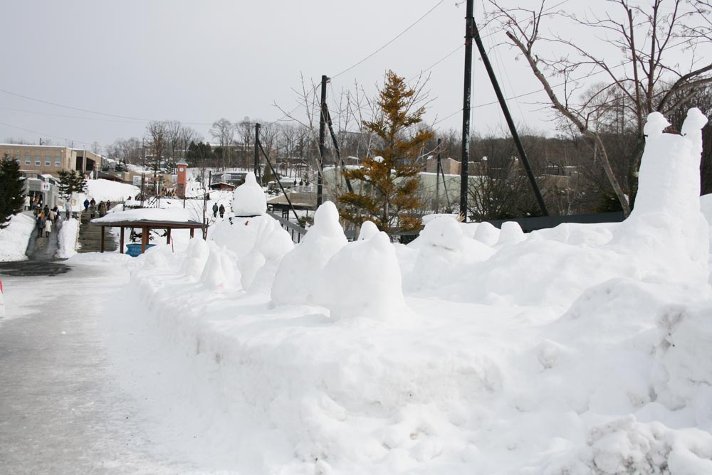 雪の日の旭山動物園の風景