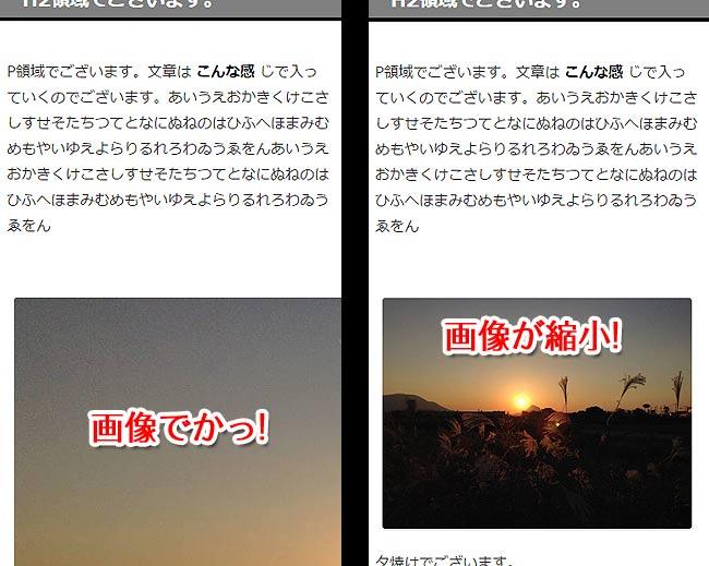 画像サイズ(左: 変更前・右: 変更後)