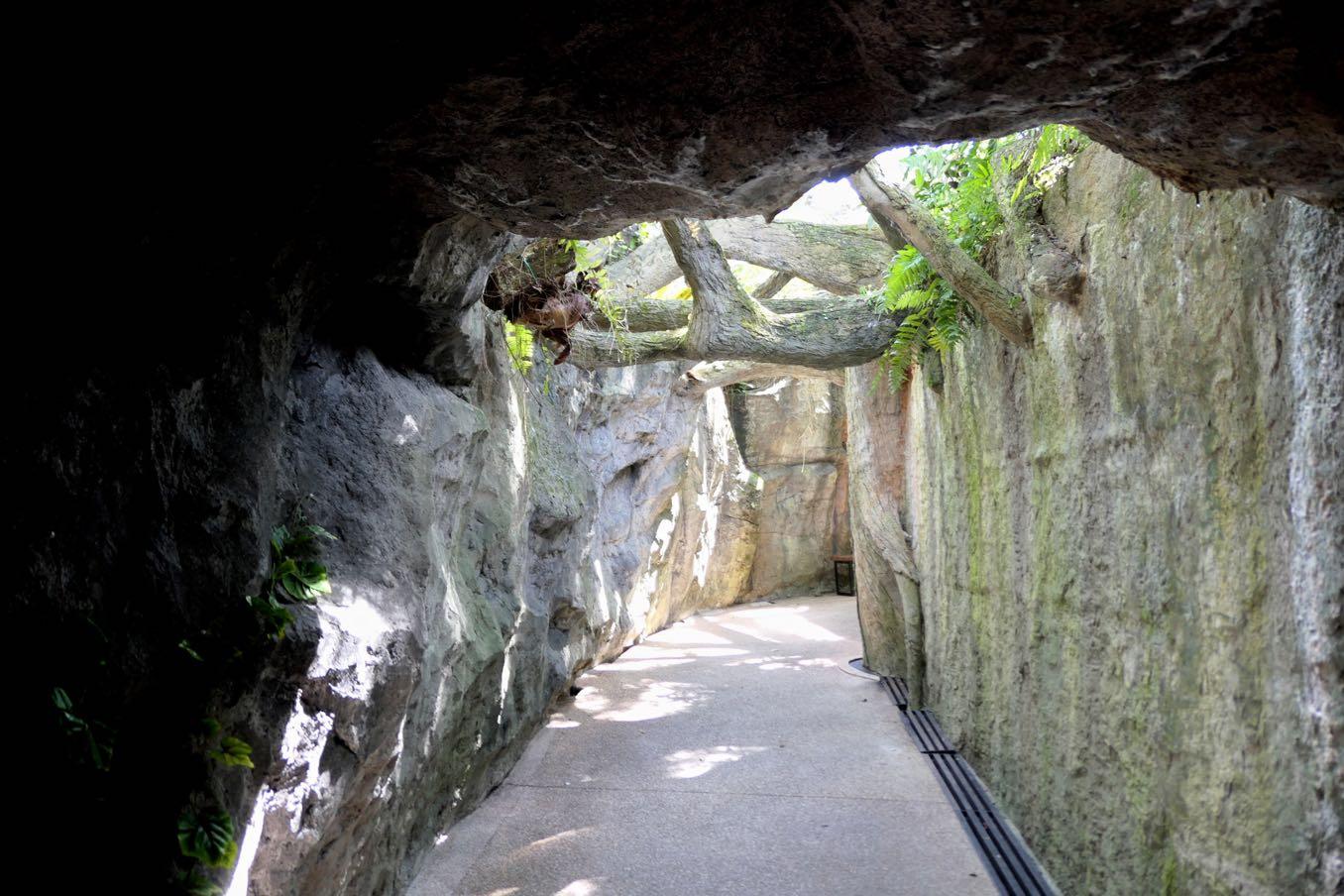 Aroma Trail(アロマ・トレイル)への道