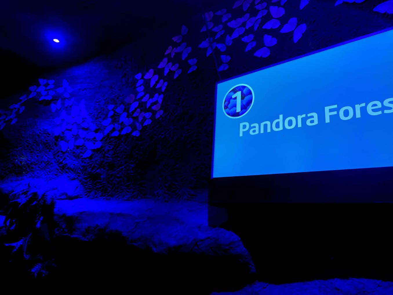 Pandora Forest