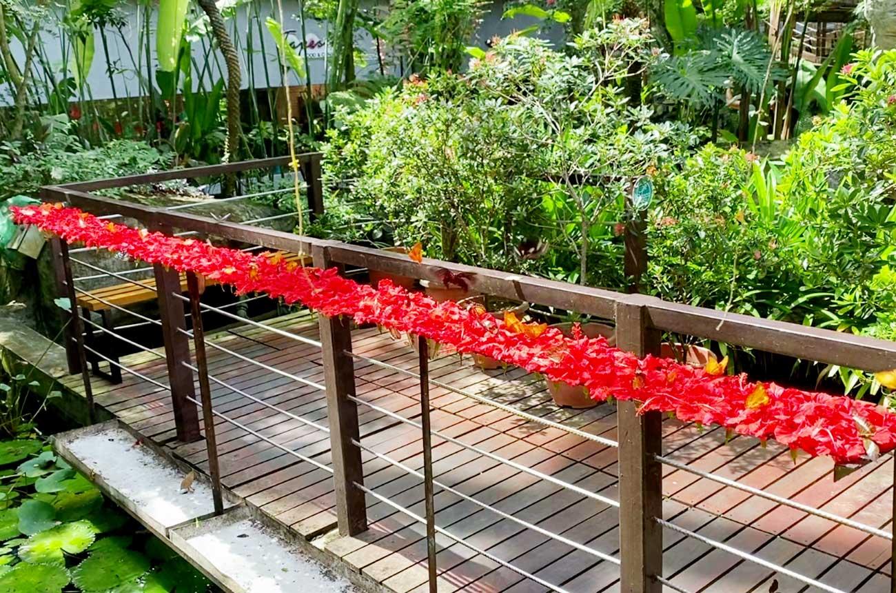 赤いお花が見える