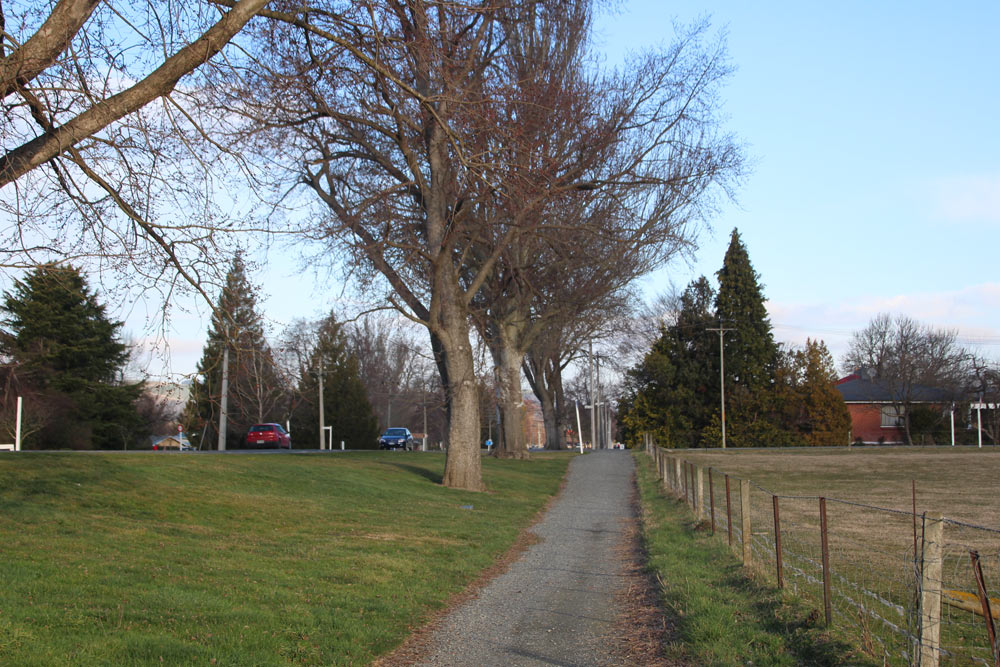 牧場横の並木道を歩く