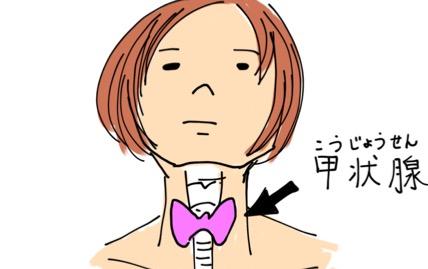 首にある甲状腺