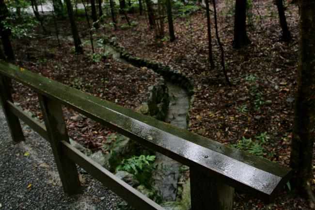 森の中の小川