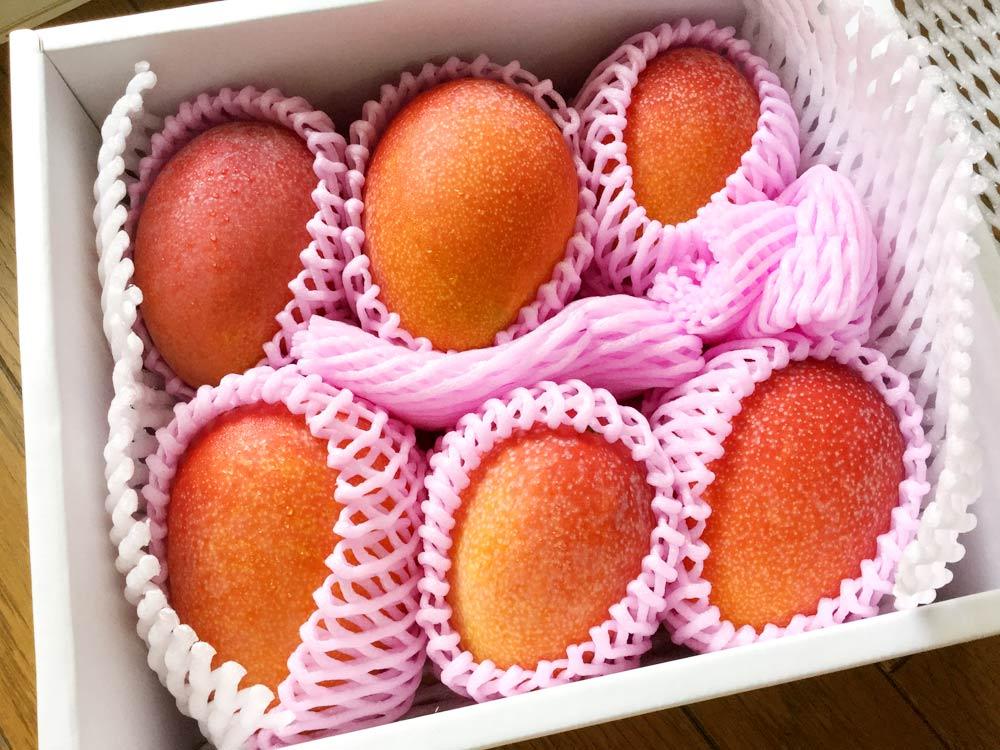 2kg分のマンゴー(6個)
