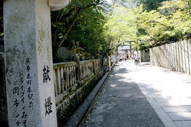 桜馬場と呼ばれる桜の咲く石畳の道