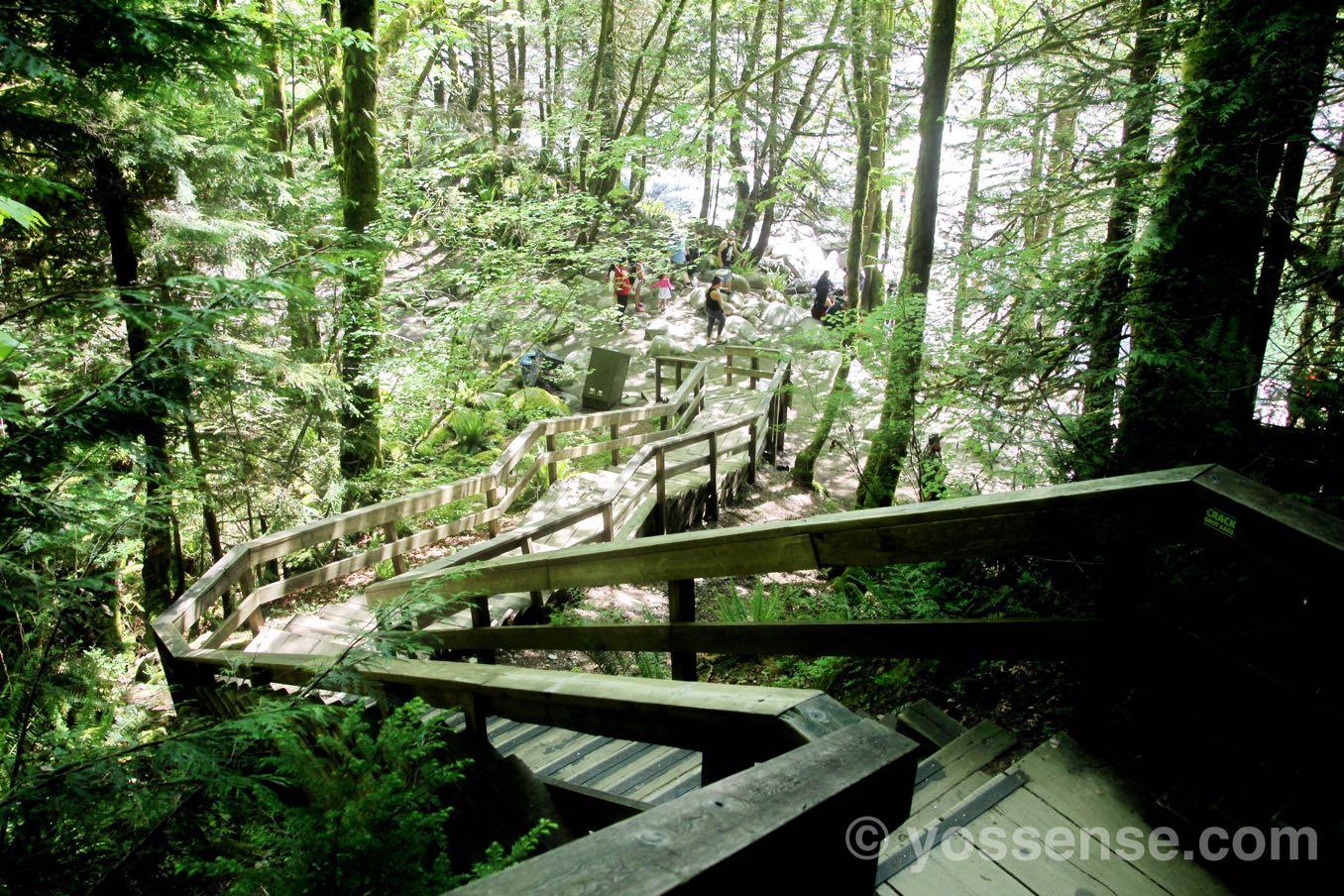 階段を下ると再び川に