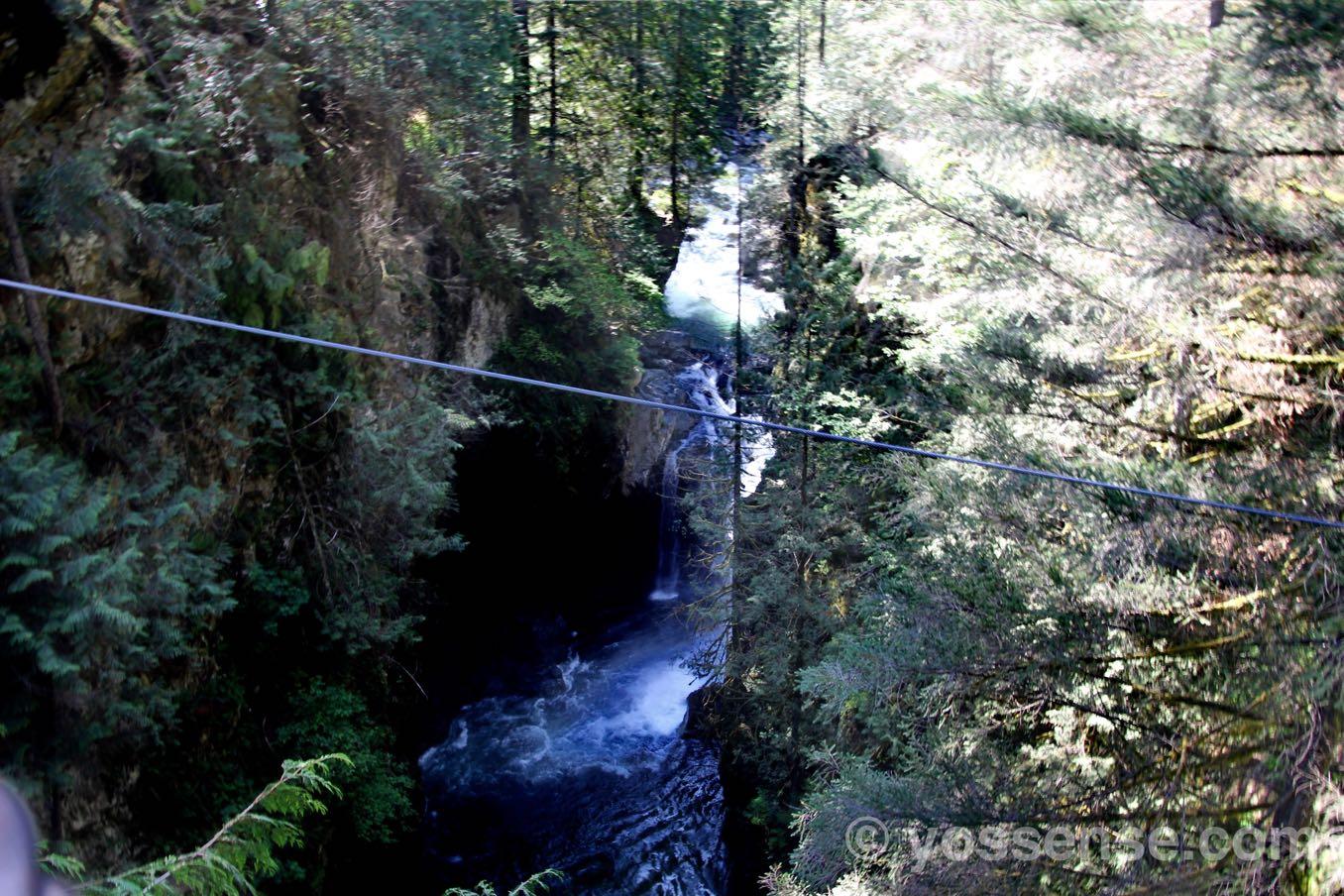 吊橋から滝が見えますよ