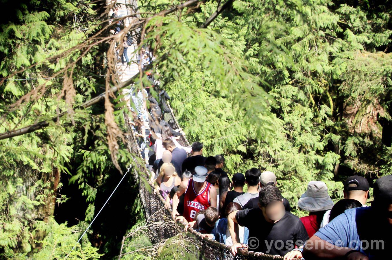 リン・キャニオン吊橋を見たところ