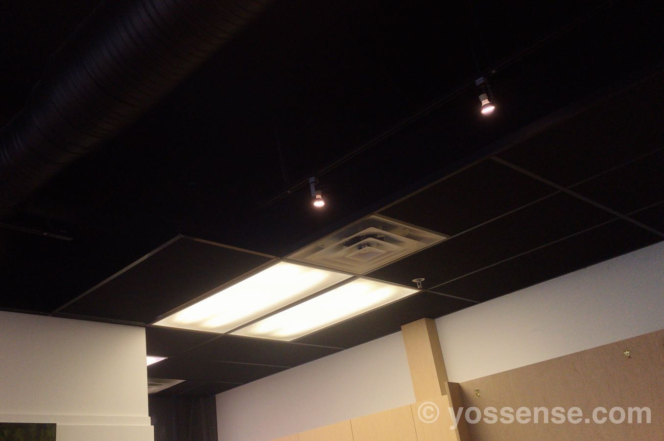 抹茶カフェ舞妓 リッチモンド店の天井