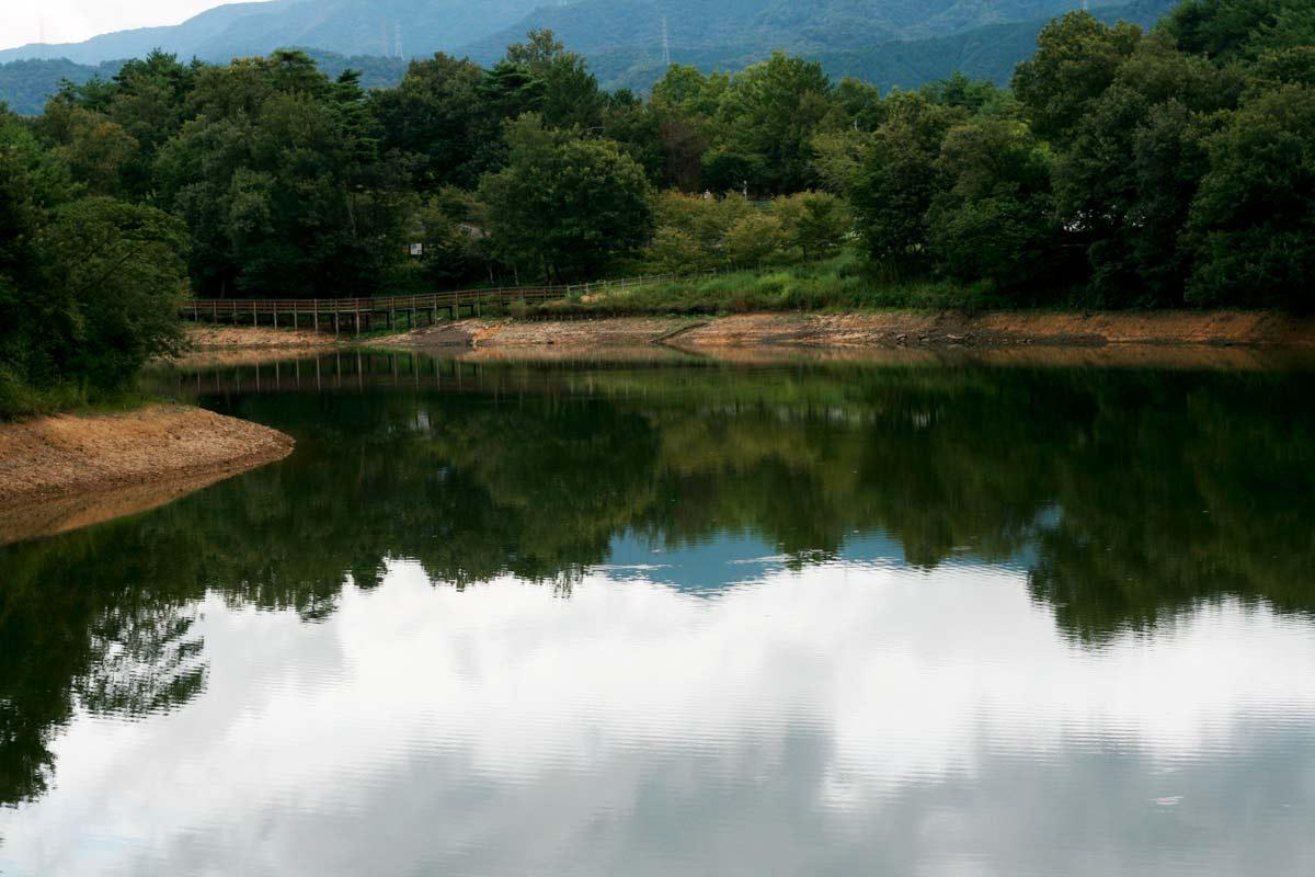 希望の丘展望台の近くにある「飛竜池」