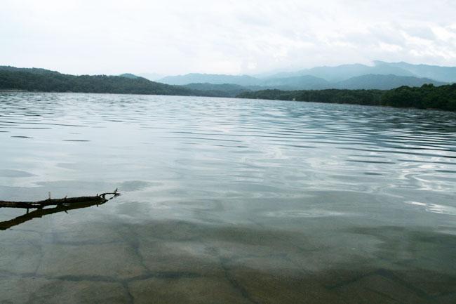 満濃池の水面
