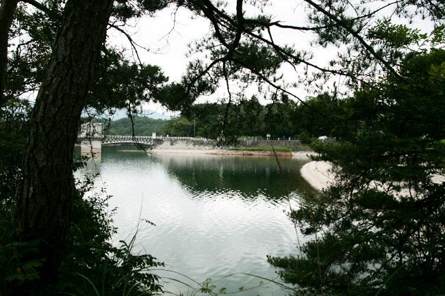 満濃池の小島からの撮影