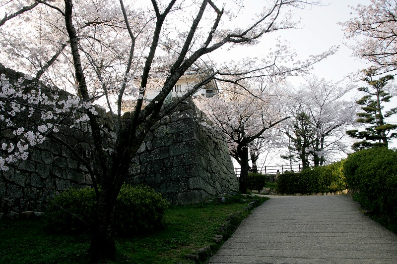丸亀城の天守が見えてきた