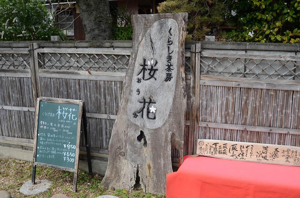 倉敷の桜花