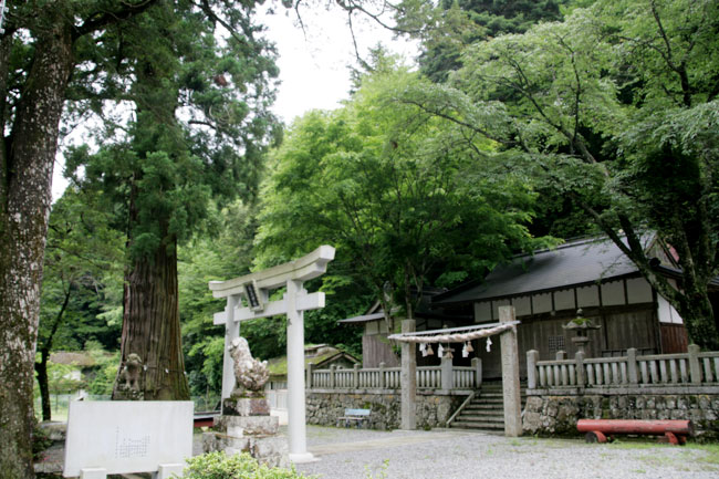 川奥会場のとなりにある杉王神社