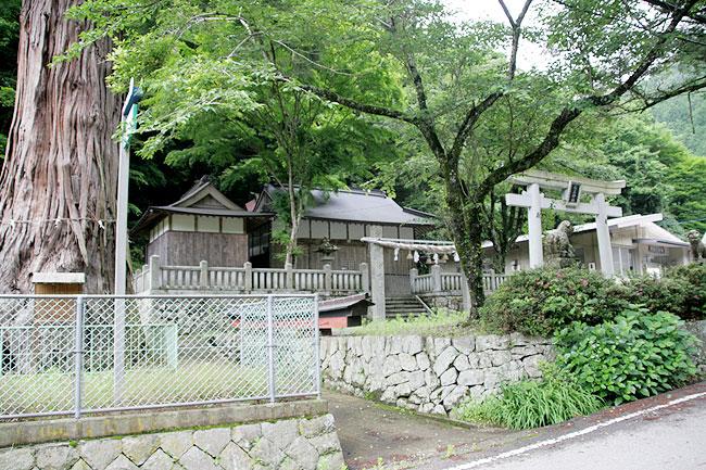 杉王神社と大杉