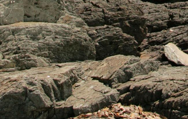 香川の天然記念物に指定されている岩