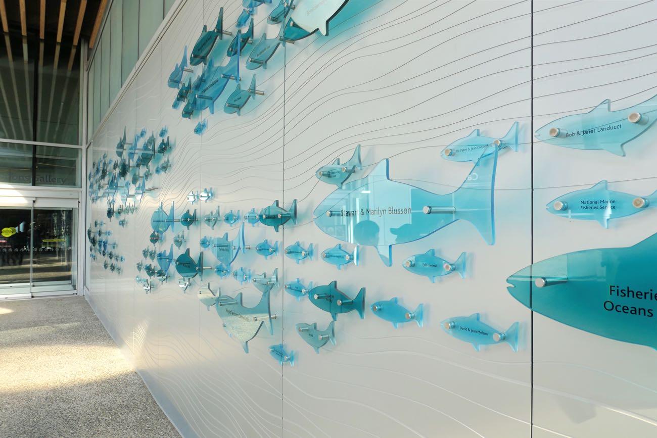 壁に魚のプレートが