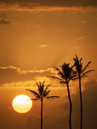 ハワイの夕暮れはたぶん最高