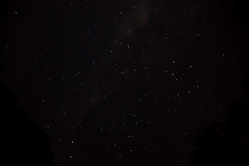 ZEALANDIAの星空は超きれい