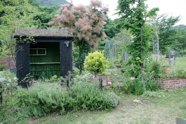 ステキなお庭だわー