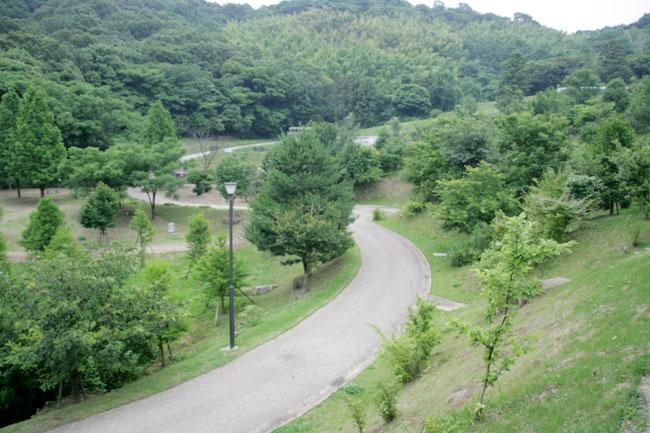 「百年の森」を越えて見える景色