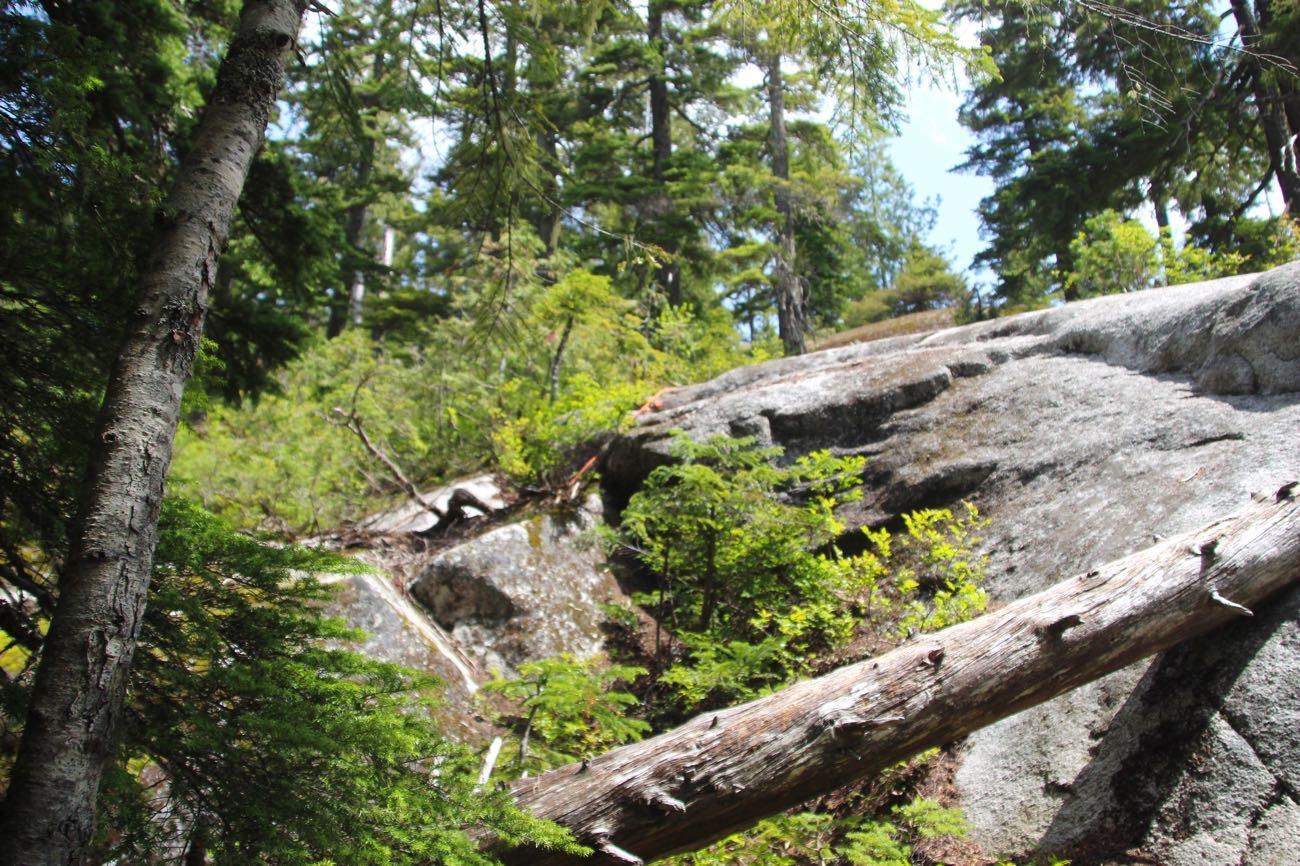 ロープで岩を登る
