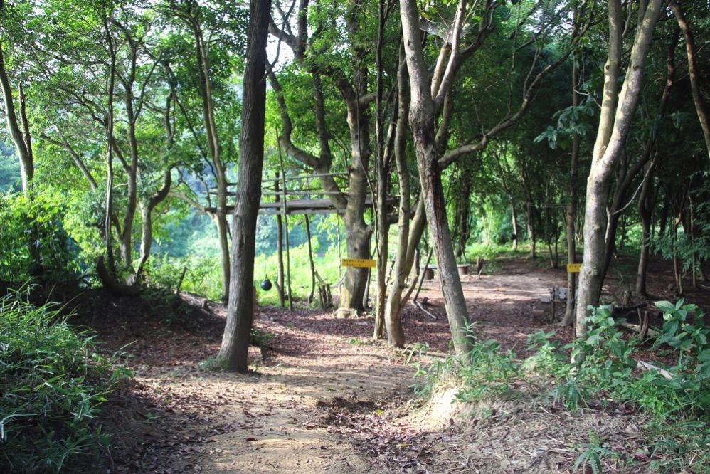 森の中に作られた遊び場