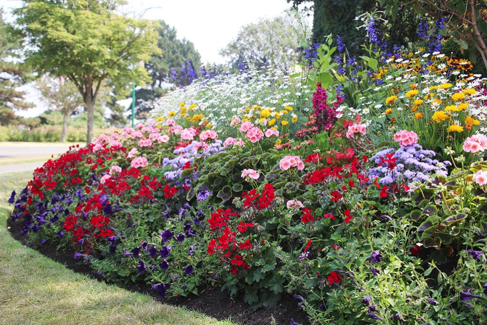 Beacon Hill Parkはお花が綺麗!