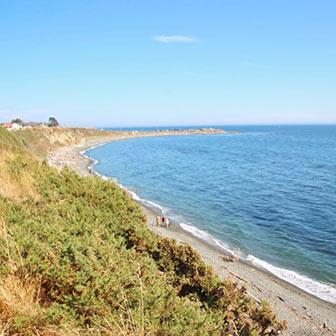[カナダ]ビクトリアにあるビーコンヒル・パークの向こうに海岸がある! 散歩におすすめです