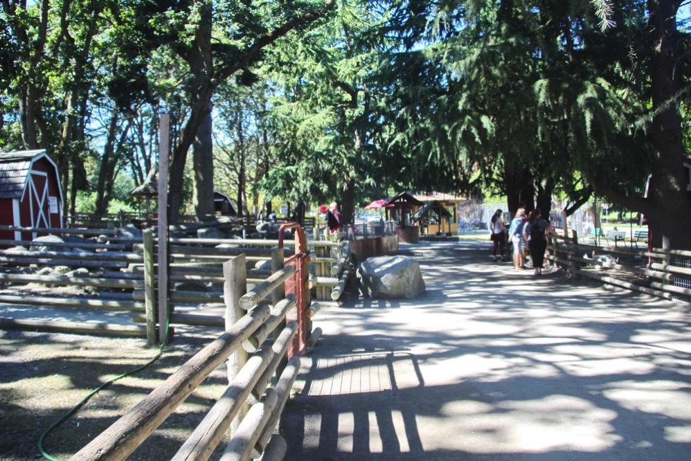 動物園の中の風景