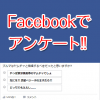 facebook-questionnaire-336