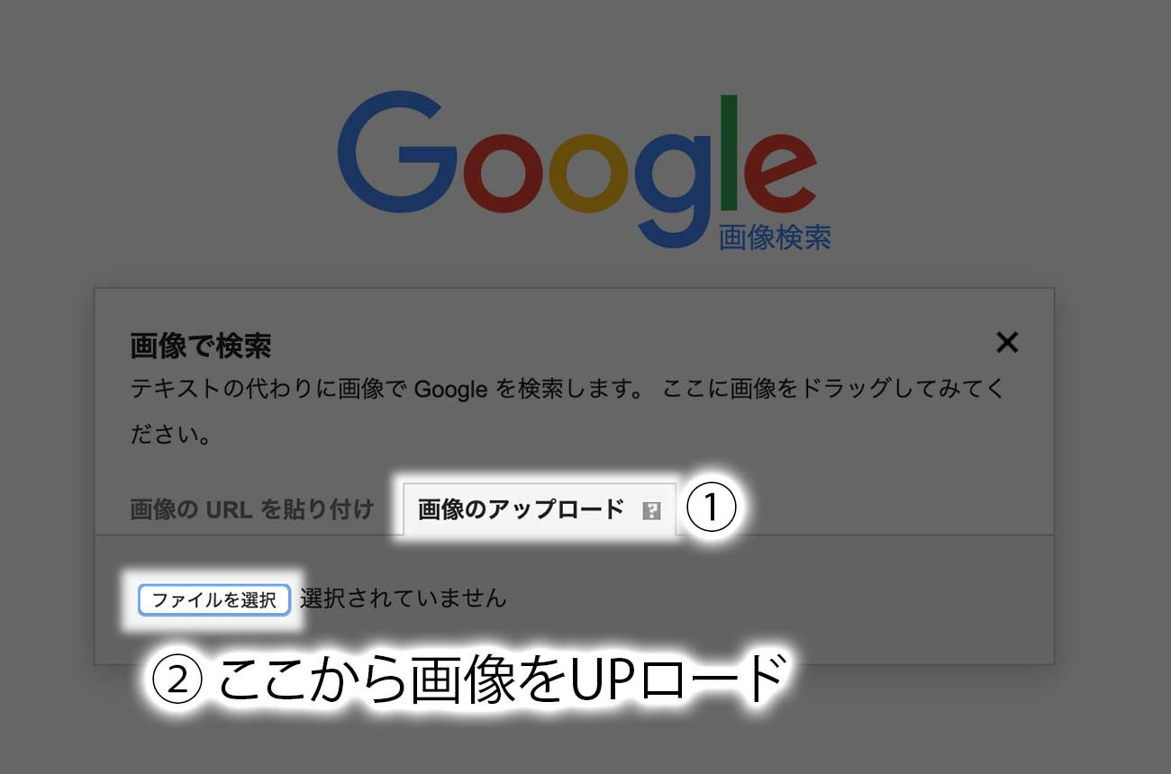 画像のアップロード→ファイルを選択
