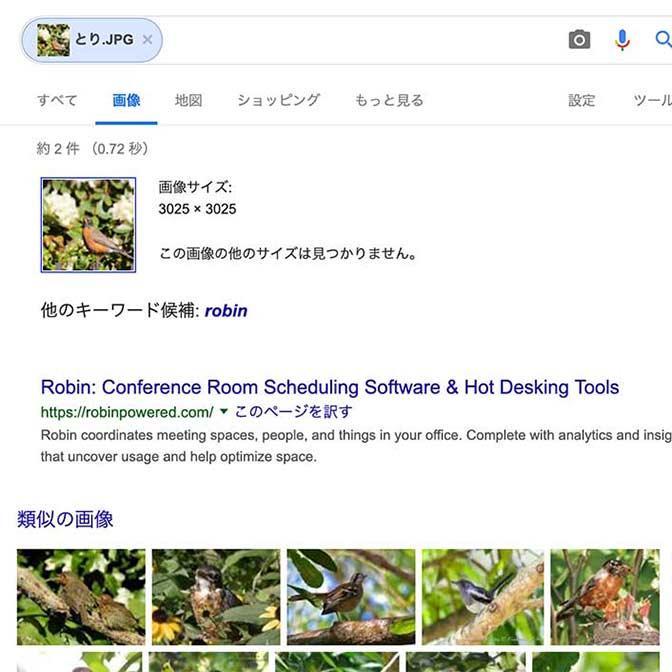 この鳥の名前がわからない! → Google画像検索なら画像から検索できるのを知っていますか?