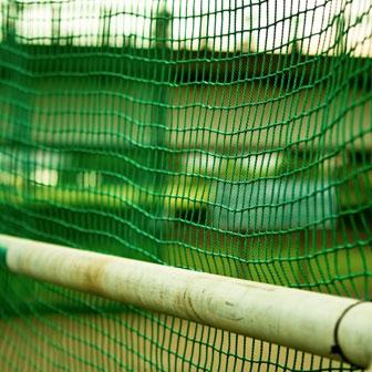 「高校野球」だけを神聖化すんな!! 野球嫌いでサッカー部だった私が無理やり応援させられてた話