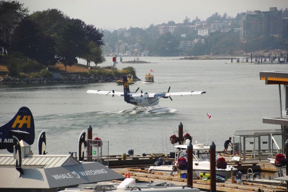 水上飛行機もあります