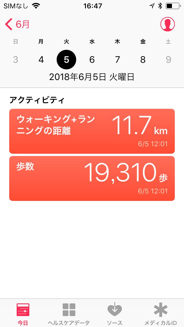 運動不足のわたしも19,310歩も歩きました