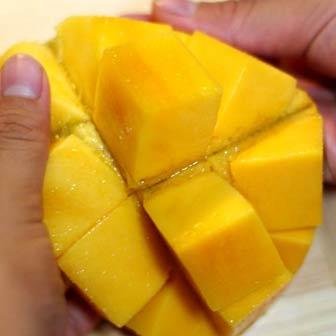 kedoku-mango-336