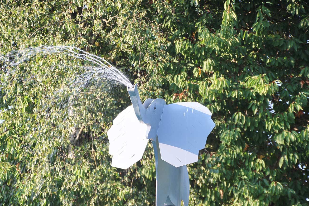 ゾウさんのシャワーも