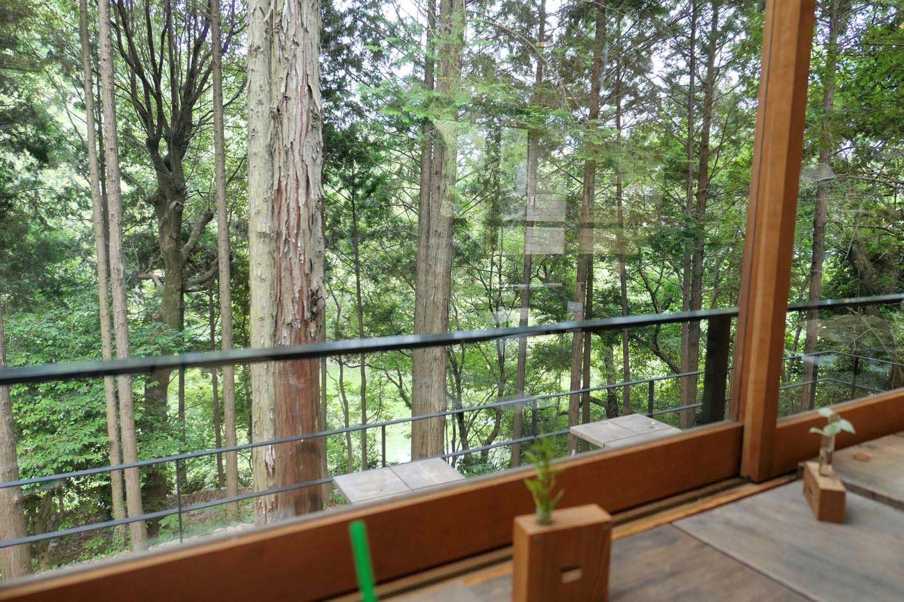 キトクラスカフェの窓から見える景色