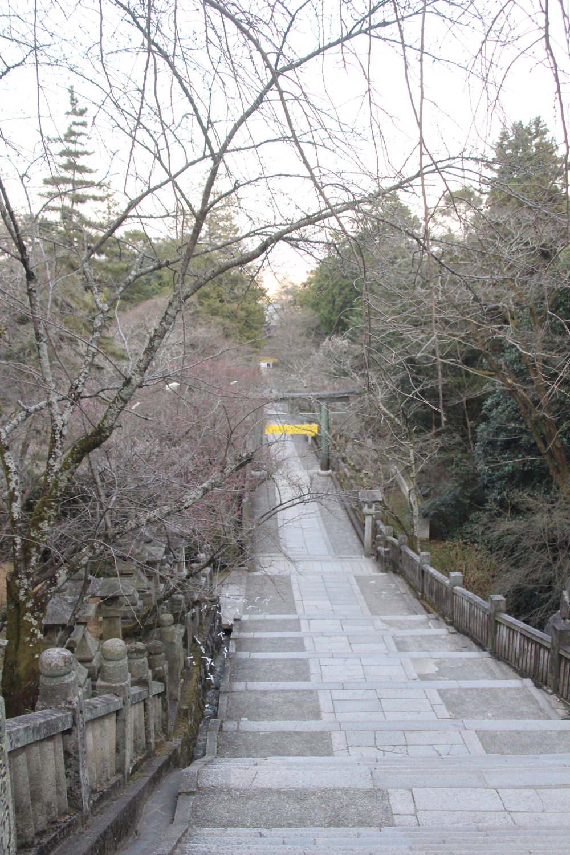 神馬の広場から桜馬場への階段