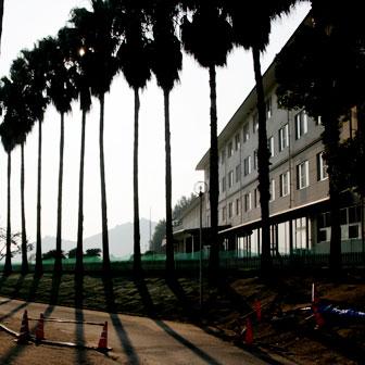 大久野島で唯一の宿泊施設「休暇村 大久野島」に泊まった感想