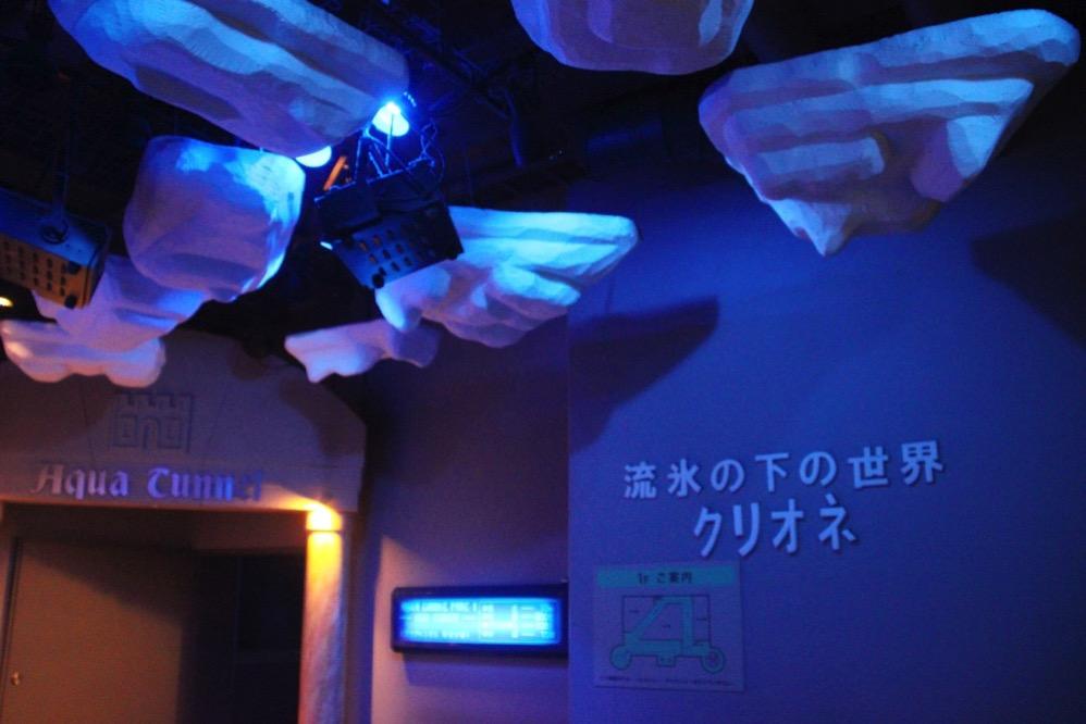 レベルの高いクリオネの展示物