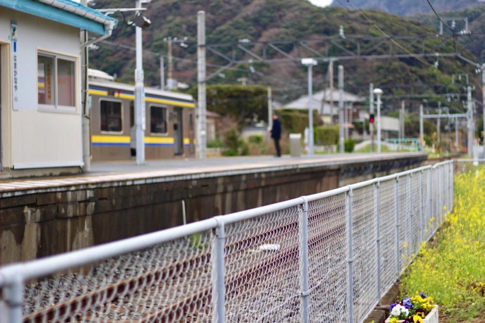 金谷駅から見た風景