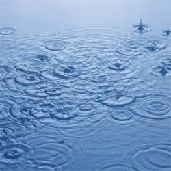 雨の日に聴きたい! しっとりとした洋楽アルバム5選(女性ボーカルのみ)