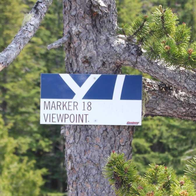 [カナダ]スコーミッシュの「Al's Habrich Trail」で「Maker 18 Viepoint」まで登ったらガチ登山でビビった件