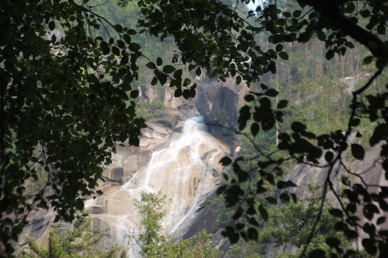 木の向こうに滝が見えてきた!